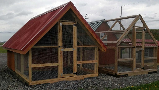 Chicken Coop Walk In Runs Amish Swings Amp Things