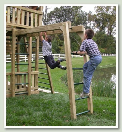 Monkey Bar Climber (8' long)